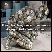 Uzayli_bilge