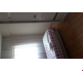 Bir odama kiracı